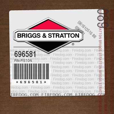 696581 Pin-Piston