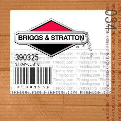 390325 Strap-Cl Mtg