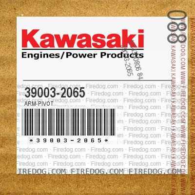 39003-2065 ARM-PIVOT
